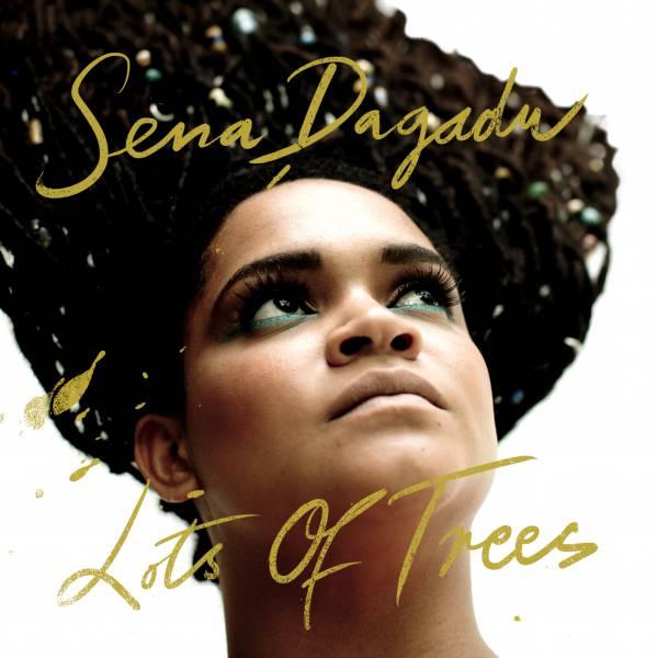 Sena Dagadu - nouvel album Lots Of Trees