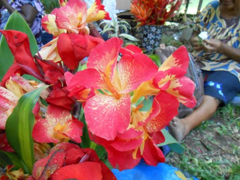 Flower and Handicraft at Moresby Arts Theater