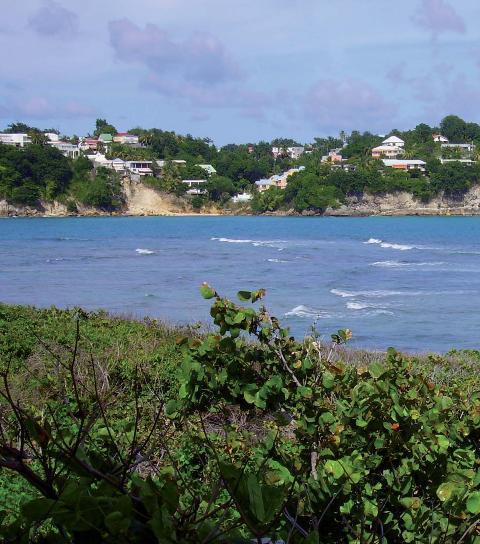 Archipels - Caraïbes, dans l'oeil du cyclone