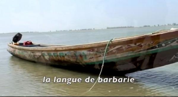 Figues de barbarie (Les)