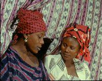 Ciné Palabres (2009 - 12) : <em>Le Wazzou polygame</em>