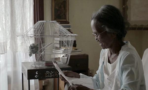 La photographie (La) - Sary Iray Tsy Nipika