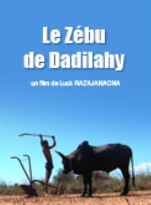 Zebu of Dadilahy