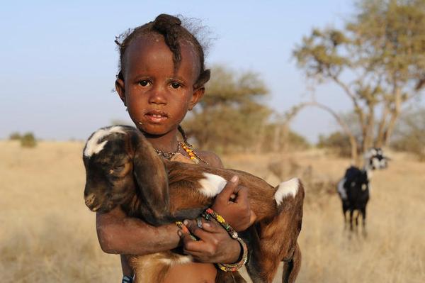 Niger, Dans les pas de Kabo Ana