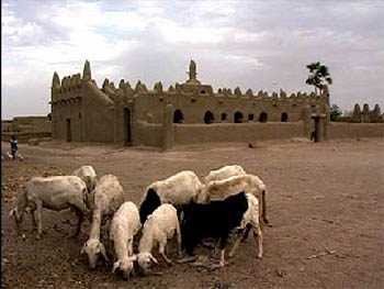 On the road to Timbuktu : explorers in Africa