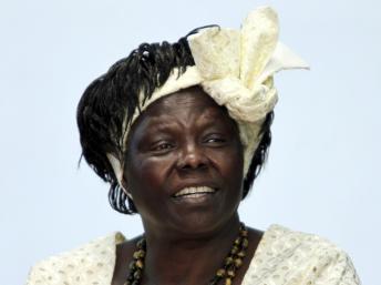 Décès de Wangari Maathai, prix Nobel de la paix en 2004