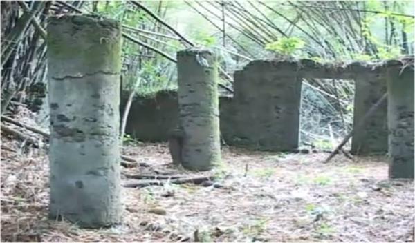 Le Cameroun veut inscrire Bimbia, site historique de la [...]
