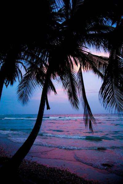 Soutenez le film Ayiti Mon [...]